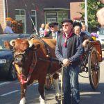 Neeltje de koe