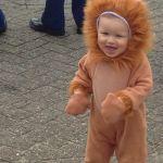 Leeuwtje Dion