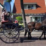 Westfriese Folklore Optocht