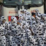 De Witte Koe Vrienden 2017