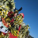 Flower Parade / Bataille de Fleurs 2015